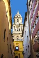 Malaga Kathedrale von der Gasse foto