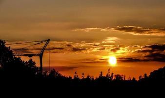 grue au coucher de soleil foto