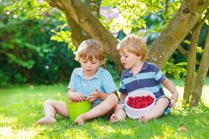 zwei kleine Geschwisterkinder, die Himbeeren im Hausgarten essen.
