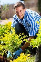 Mann pflanzt Strauch im Garten foto