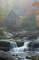 Nebel in der alten Mühle foto