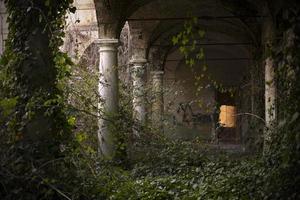 Von Vegetation umgebene Säulen in einem alten verlassenen Haus