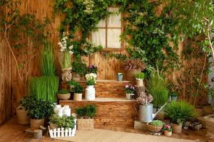 Frühlingsterrasse eines Holzhauses mit grünen Pflanzen foto