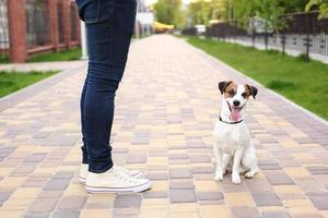 Ein Mann und ein Hund gehen im Park spazieren foto