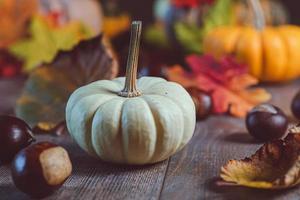 weißer Kürbis mit Herbstlaub foto