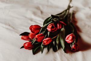 rote Tulpen auf weißem Leinen