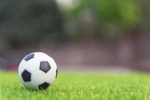 Fußball auf der grünen Wiese foto