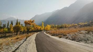 Herbstlaub in Thorgo mit Blick auf die Bergkette
