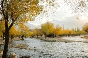 Fluss fließt durch bunten Laubhain im Herbst foto