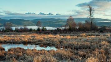 braune Wiese nahe See und Berg unter blauem Himmel