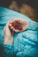 Person, die rote Beeren hält