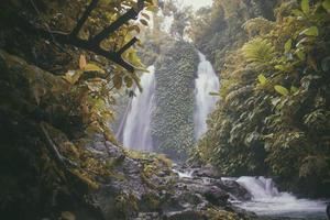 Wasserfall umgeben von grünen Bäumen foto