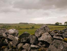graue Felsen auf grünem Gras