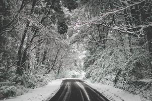 leere verschneite Straße foto
