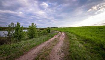 grünes Grasfeld foto
