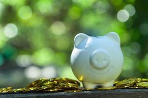 Sparschwein mit Goldmünzen auf dem Tisch draußen foto