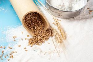 Mehl und Weizen