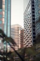 Blick auf das Stadtbild durch die Bäume foto