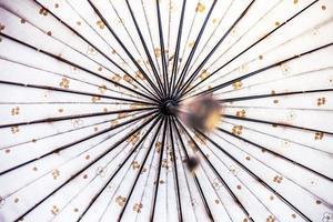 weißer Regenschirm mit Blumenmustern foto