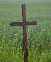 einfaches Holzkreuz foto