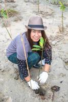 asiatische Frau, die neuen Baum pflanzt