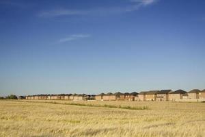 Häuser, die in Ackerland eindringen. Zersiedelung.