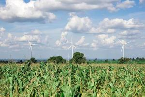 Windkraftanlage für alternative Energie auf Hintergrundhimmel auf Maniok