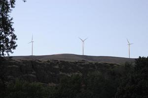 Windräder foto