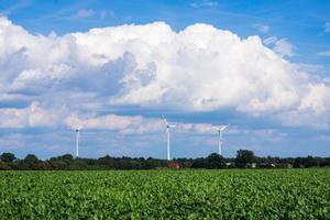 Windmühlen zur Stromerzeugung. Windkraftanlagen auf dem m foto