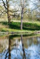 szenische Reflexionen von Bäumen und Wolken im Wasser