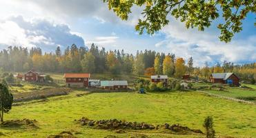Bauernhof und Häuser auf dem Feld in der Nähe von Wald