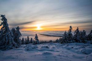 Schnee auf Bäumen und Feld bei Sonnenuntergang foto