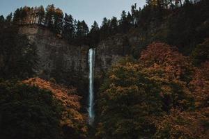 Wasserfall umgeben von Bäumen foto