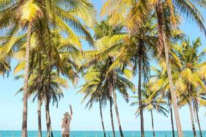 Frau, die unter Palmen am Strand steht