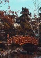 Holzbrücke über Teich foto
