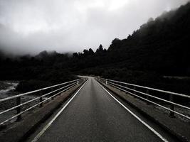 Straße durch Nebel und Bäume foto