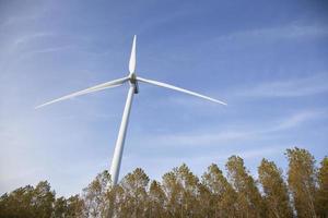 Windkraftanlage über Bäumen in Holland foto