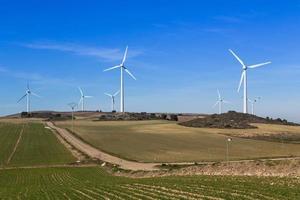 Windpark foto