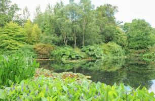 Gärten bei Rosemore, Torrington, in Devon, England, Großbritannien foto