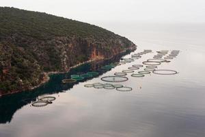 Offshore-Fischfarm auf offener See foto