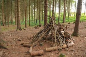 Waldspaziergang bei Rosemoor Gardens, Devon, England, Großbritannien