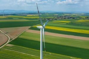 Windmühlen foto