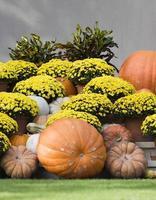 Herbstanzeige auf der Veranda - Hochformat foto
