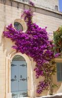 Hausfassade mit Blumen