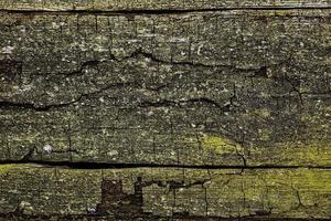 die alte Planke, Hintergrund oder Textur foto