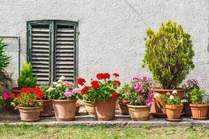 Fenster und Türen in einem alten Haus mit Blumen geschmückt foto