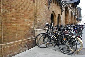 Gruppe von Fahrrädern im städtischen Parken foto