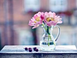 Kirschen und Pfingstrosenblüte foto