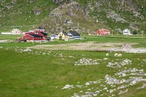 traditionelle norwegische bunte Häuser, Lofoteninseln, Norwegen