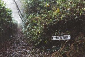 Melden Sie sich im Wald neben dem Pfad an foto